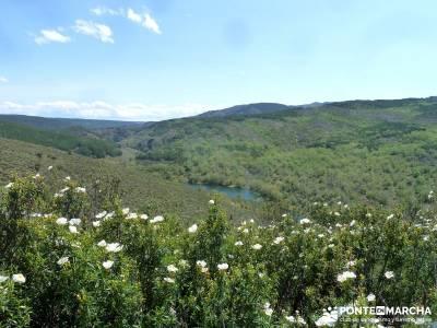 Cascadas del Aljibe; agencias de viajes para grupos; senderismo hoces del duraton;ruta gr 10